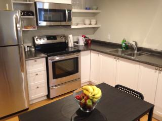 1 bedroom Apartment with Internet Access in Ottawa - Ottawa vacation rentals