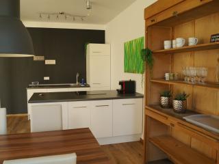 LOFT STYLE 3 Zimmer Apartment + Terrasse - Villingen-Schwenningen vacation rentals