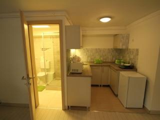 4 bedroom Condo with Short Breaks Allowed in Balatonfured - Balatonfured vacation rentals