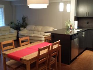 Brand New Furnished Apartment Style Condo - Calgary vacation rentals