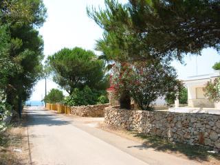 IL GABBIANO VILLA A MANCAVERSA - Gallipoli vacation rentals