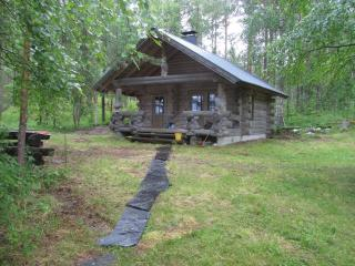 Nice Cabin with Television and Water Views - Juuka vacation rentals