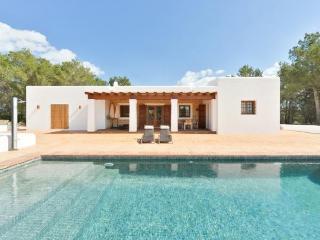 Villa with fireplace,garden Sa - San Miguel vacation rentals