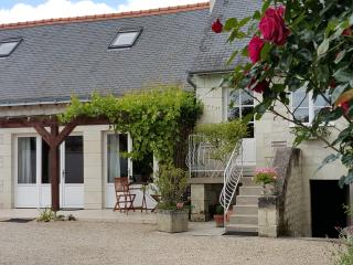 Cheerful holiday home with swimming pool in Loire - Beaumont-en-Veron vacation rentals