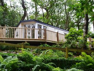 Aberdunant Luxury Caravan with private HOT TUB! - Beddgelert vacation rentals