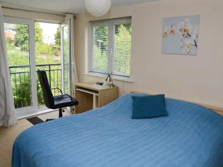 Exeter City Centre BADGERS GROVE HOLIDAY APARTMENT - Exeter vacation rentals