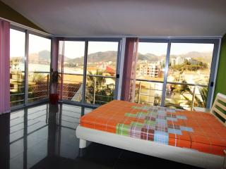 Penthouse apartment - Rafailovici vacation rentals