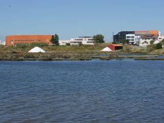 Modern T0 flat university area view to the ria - Aveiro vacation rentals