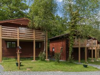 Beech Tree Lodge - Holsworthy vacation rentals