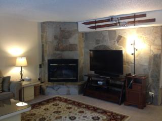 Heavenly Condo! Christmas & New Years Available! - South Lake Tahoe vacation rentals