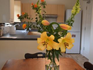 HOTELTAWANDA - Medway Hospital Residence - Gillingham vacation rentals