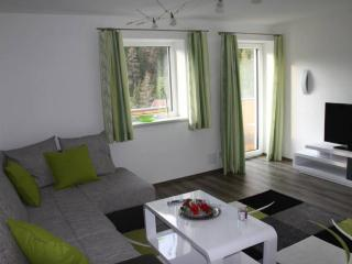 Vacation Apartment in Biberwier - 700 sqft, nice view, comfortable, bright (# 8894) - Biberwier vacation rentals