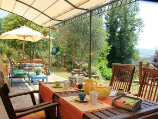 Cottage Sabina countryside near Rome - Torrita Tiberina vacation rentals
