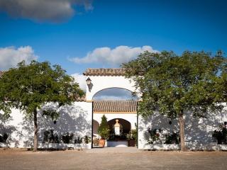 House in Arcos de la Frontera, Cádiz 102274 - Arcos de la Frontera vacation rentals