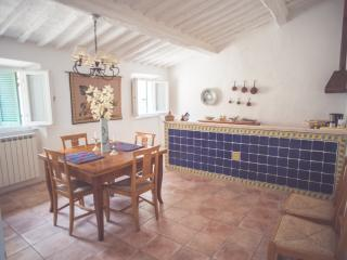Live in Medieval Village in Tuscany - Campiglia Marittima vacation rentals