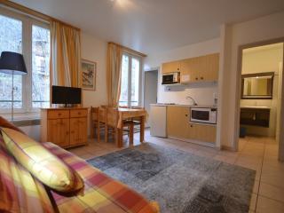 Appartement de Charme à St Gervais - Saint Gervais les Bains vacation rentals