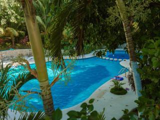 Playa del Carmen Suite Lunaysol Buen Dia Playa - Playa del Carmen vacation rentals