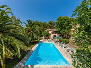Bright 5 bedroom Villa in Roquefort les Pins - Roquefort les Pins vacation rentals