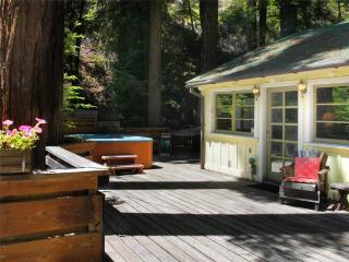 Sunny House with Internet Access and Television - Guerneville vacation rentals