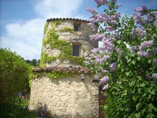 3 bedroom Gite with Internet Access in La Bastide-des-Jourdans - La Bastide-des-Jourdans vacation rentals