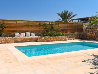Old townhouse with garden and pool - Caimari vacation rentals