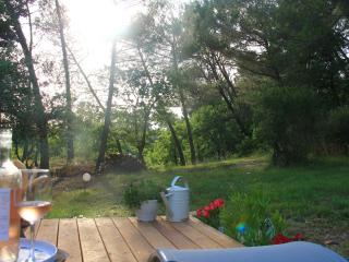 Sunny Gite with Internet Access and A/C - Fuveau vacation rentals