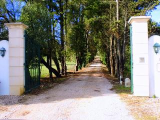 Quinta da Alcaidaria Mor - D. Maria - Ourem vacation rentals