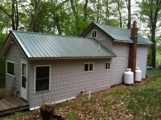 Dry Cabin 10 minutes to Cherry Springs  Dark Skies - Galeton vacation rentals
