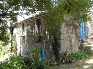Nice Gite with Internet Access and Washing Machine - Vaour vacation rentals