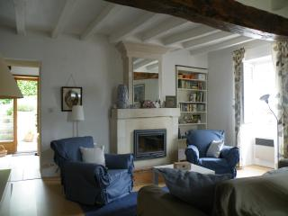 HOMELY GITE 3* IN THE LOIRE VALLEY - Huismes vacation rentals