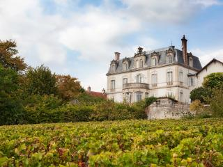 CHATEAU DE MERCUREY (official) - Mercurey vacation rentals