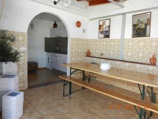 Nice House with Internet Access and A/C - Fuzeta vacation rentals