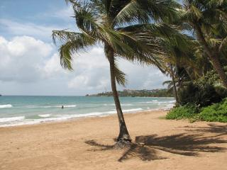 Premier, Newly Remodeled Oceanfront, Spectacular View Villa in Palmas Del Mar (BV231) - Humacao vacation rentals