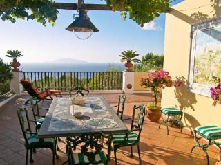 Located in a quiet area of Capri, surrounded by Mediterranean plants, you may never want to leave this Italian haven. LDG HED - Capri vacation rentals