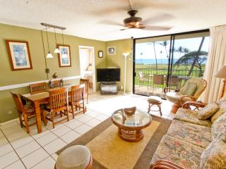 2BR Beachfront; Clean; Great Mountain & Ocean View - Kihei vacation rentals