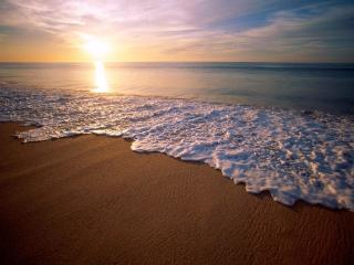 Beautiful Condo in Cabo San Lucas at Medano Beach - Cabo San Lucas vacation rentals