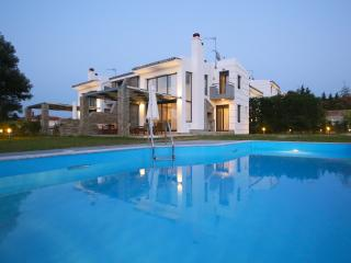Sunny Sani Luxury Villas - Sani vacation rentals