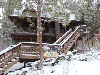 Cougar's Tree House - Hot Tub, Dish Network, WIFI - Big Bear Lake vacation rentals