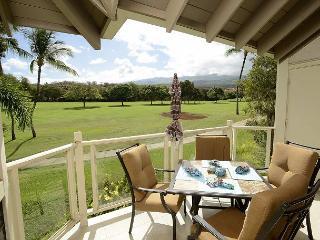 2 bedroom Apartment with Internet Access in Wailea - Wailea vacation rentals