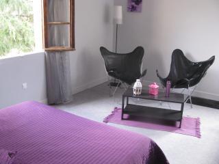 Cozy 2 bedroom B&B in Bezenac - Bezenac vacation rentals