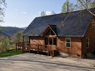 Sunrise in the Smokies - Quiet Mountainside Log Cabin - Amazing View, Beautiful Decor, Great Firepit, Large Hot Tub Wi-Fi - Bryson City vacation rentals