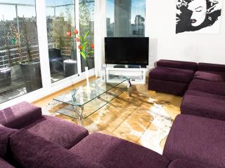 4 Bedroom Apartment with Terrace in Palermo Hollywood - Buenos Aires vacation rentals