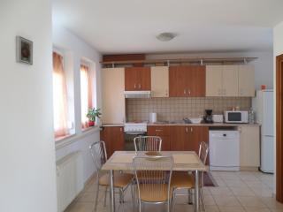 Budapesta Apartment-modern, spacious, comfortable - Timisoara vacation rentals