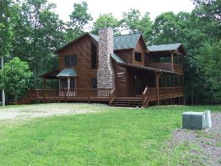 Beautiful 3 bedroom Cabin in Blairsville - Blairsville vacation rentals