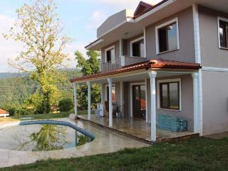 Sapanca Boutique villas with lake manzara view - Sapanca vacation rentals