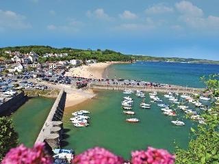 Nice Condo with Washing Machine and Television - Saundersfoot vacation rentals