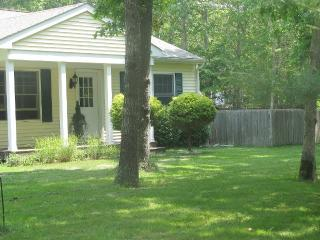 Serene & Private East Hampton Summer Rental w/pool - East Hampton vacation rentals