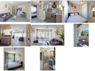 T3 Grand Standing refait à neuf en Centre Ville - Angers vacation rentals