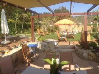 ''Traditional houses Kefala 1860'' - Xiro Chorio vacation rentals