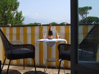 Apartment in Lido di Camaiore Air Conditioned - Viareggio vacation rentals